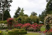 Victorian Rose Garden